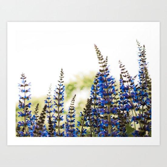 The Purple Field Art Print