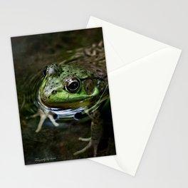 Frog Floating Stationery Cards