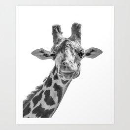 Giraffe | Peek-A-Boo | Animal Photography | Minimalism | Mammal | Wildlife | Nature Art Print