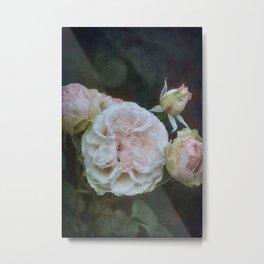 Rose 404 Metal Print