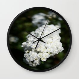 Deutzia White Spring Blossoms Wall Clock