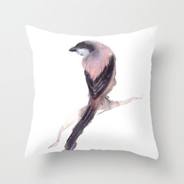 Long Tailed Shrike Throw Pillow