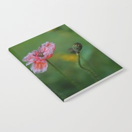 Poppy Flower Notebook