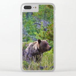 Grizzly mother watches over the area as her young cubs play nearby Clear iPhone Case