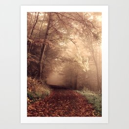 Forest path 2 Art Print