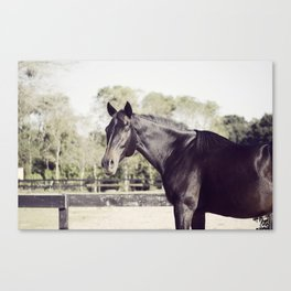 Beautiful in Blac 2 Canvas Print