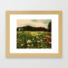 Poppies in Pilling Framed Art Print