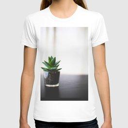 Minimalist Succulent Cactus Aloe Vera T-shirt