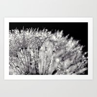 silver Art Prints featuring silver by Bonnie Jakobsen-Martin