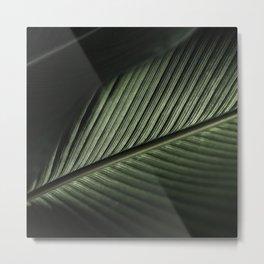 Fig Leaf I Metal Print