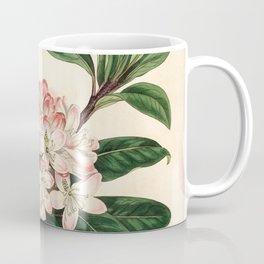 Rhododendron maximum 'Great laurel' Coffee Mug