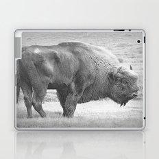 Bison Laptop & iPad Skin