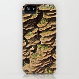 shelf fungus iPhone Case