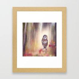 Barn owl perching in the autumn sunny forest Framed Art Print