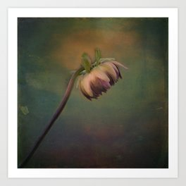 Once Upon a time a lonely flower Art Print