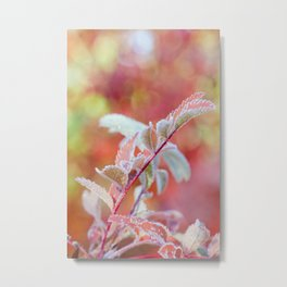Mountain Ash Frozen In Pink Metal Print