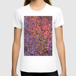 Colorful Fall Leaves T-shirt
