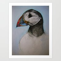 puffin Art Prints featuring Puffin by Hannah Jane Walker