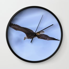 Bald Eagle flying near some trees Wall Clock