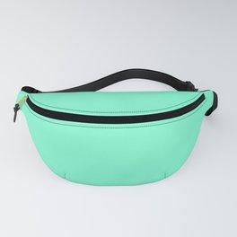 Aquamarine Fanny Pack