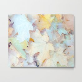 Pastel Autumn Leaves, Fall Nature Photography by Murray Bolesta Metal Print