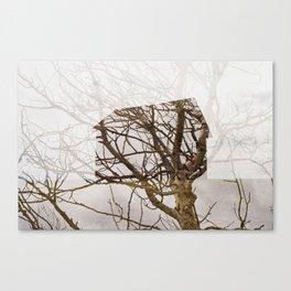 Nature's Architecture  Canvas Print