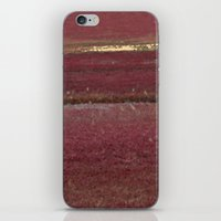 cape cod iPhone & iPod Skins featuring Cape Cod Cranberry Bog by Brooke T Ryan Photography