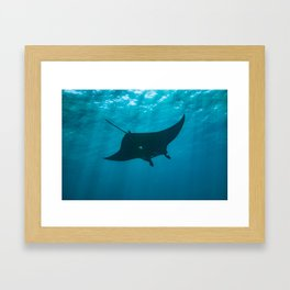 Holy Manta Framed Art Print