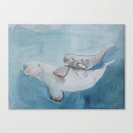 Beluga whale, mom and baby beluga illustration Canvas Print