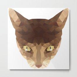triangular cat Metal Print