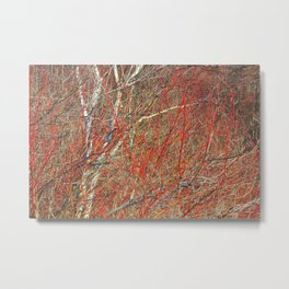 Bluffs Calligraphic (Red) Metal Print