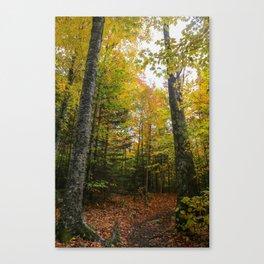 Autumn in the Adirondacks Canvas Print