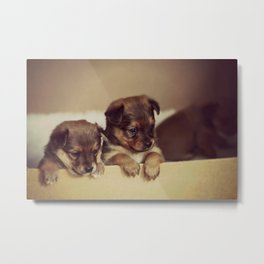 Little Cuties Metal Print