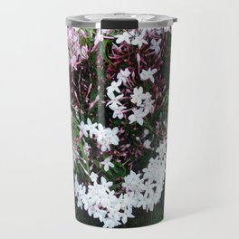 Beautiful Jasmine Flowers In Full Bloom  Travel Mug