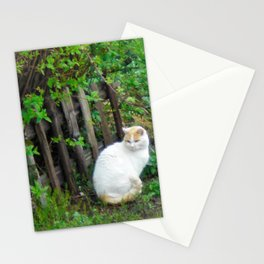 Mirabella the White Cat Stationery Cards