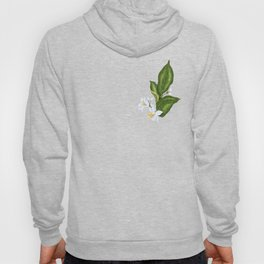 Citrus Flower Pattern with Spring Flowers and Leaves Hoody