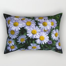 Plant Patterns - 𝘌𝘳𝘪𝘨𝘦𝘳𝘰𝘯 sp. Rectangular Pillow