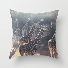 Giraffe National Park // Spotted Long Neck Graceful Creatures in Wildlife Preserve Throw Pillow
