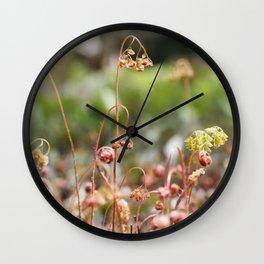 Fern Tendrils II Wall Clock