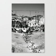 downfall Canvas Print