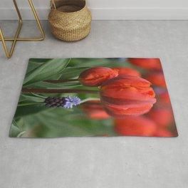 We Belong Together, Holland Tulips by Karen Images Rug