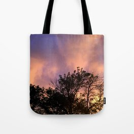 the skeleton of sunsets Tote Bag