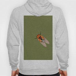 Cicada Hoody