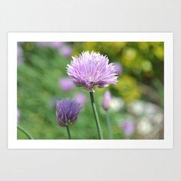 whoville flower Art Print