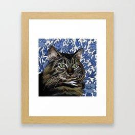 Mooney the cat on a blue flower chair Framed Art Print