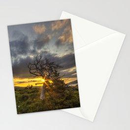 Old Friend - Many Glacier Stationery Cards