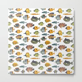 School of Tropical Fish Metal Print