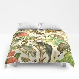Chameleon Party Comforters