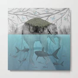 Elephant Island Metal Print
