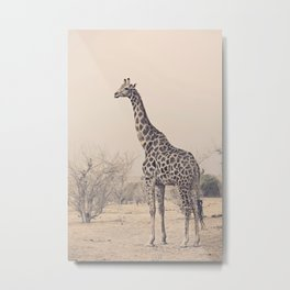 G is for Giraffe Metal Print